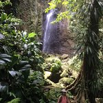 A sample of a nearby jungle waterfall