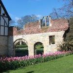 Photo of Museum Gardens