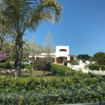 Photo de Villa delle Palme Delfina