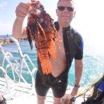 Ocean Encounters Lionfish Scuba Dive Experience