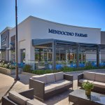 Mendocino Farms Brea
