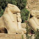 Avenue of Sphinxes resmi