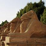 Foto di Avenue of Sphinxes