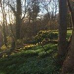 Landscape - Otterburn Castle Country House Hotel Photo
