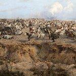 Photo de Panorama of Raclawice Battle