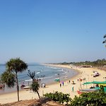 Candolim Beach by the Bougainvillea