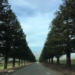Hahn Estate Winery Foto