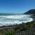 Photo of Seal Coast Safari