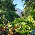 Photo of Nayara Resort Spa & Gardens
