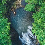 Photo de Koro Sun Resort and Rainforest Spa