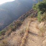 Echo Mountain Hiking Trails