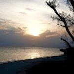Foto de Chumbe Island Coral Park