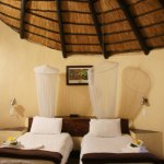 Photo of Timbavati Safari Lodge