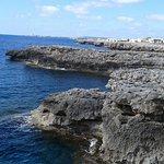 Foto di Globales Mediterrani
