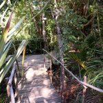 Bamboo the Guesthouse Image