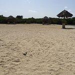 Foto de Mangel Halto Beach