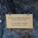 Relais Bellaria Hotel & Congressi Foto