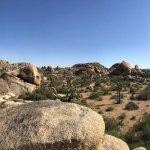 Jumbo Rocks Campground Foto