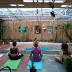 In-house yoga classes