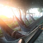 Hammocks to relax by the beach