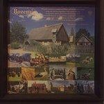Bozena history