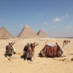 Photo de Real Egypt Day Tours