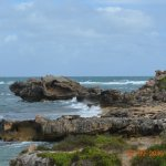 More views from point peron
