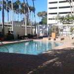 Foto de Holiday Inn Tampa Westshore