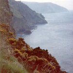 Coastal path nr Valley of the Rocks Devon © Robert Bovington