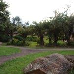 Garden view chalet view