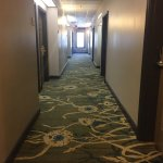 Photo de Country Inn & Suites By Carlson, Washington Dulles International Airport
