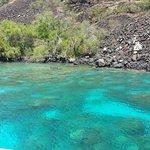 lots of reef
