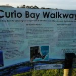 Photo of Curio Bay Natural Heritage Centre