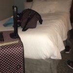 esta era mi cama , te acostabas y muy comoda con las 3 almohadas y su cobertor