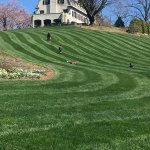 Rolling down the lawn beneath the main house