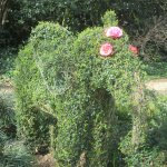 Green elephant by greenhouse