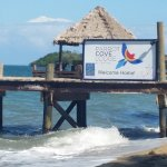 Foto de Parrot Cove Lodge