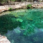 Cenote by Tulum