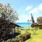 Photo of Polynesian Shores
