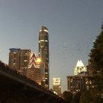 Foto de Congress Avenue Bridge / Austin Bats