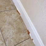 Chipped paint on the baseboards