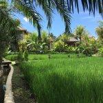 Foto de Sankara Resort