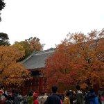 Foto de Fragrant Hills Park (Xiangshan Gongyuan)