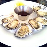 Oysters - Very very fresh