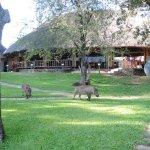 Photo of A'Zambezi River Lodge