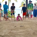 Crab races....a family favorite.
