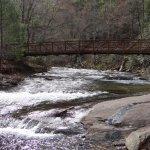 Walkway bridge over the beautiful creek
