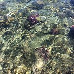Crystal Clear Water , taken by my iPad