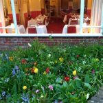 Flower borders and dining area