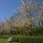 Photo of Les Jardins Suspendus